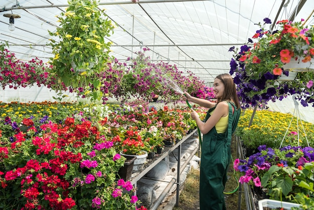 Jardineiro profissional feminino regando todos os dias e cuidando das flores em uma estufa.