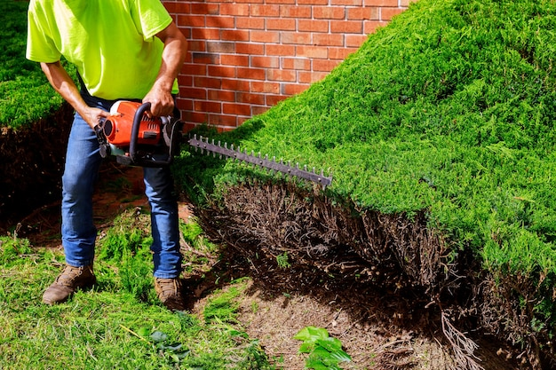 Jardineiro profissional vestido com segurança e sebe com aparador