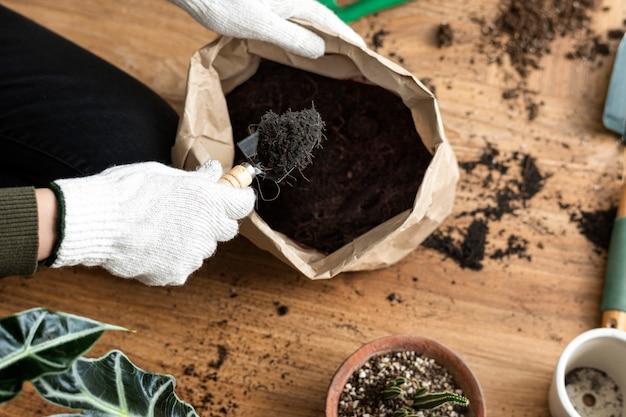 Jardineiro repotando uma planta de casa