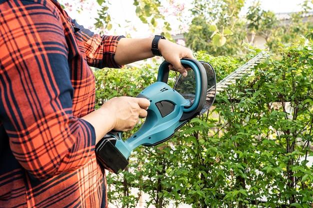 Jardineiro segurando um corta-sebes elétrico para cortar a copa das árvores no jardim