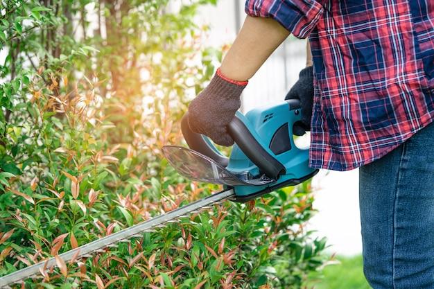 Jardineiro segurando um corta-sebes elétrico para cortar a copa das árvores no jardim.