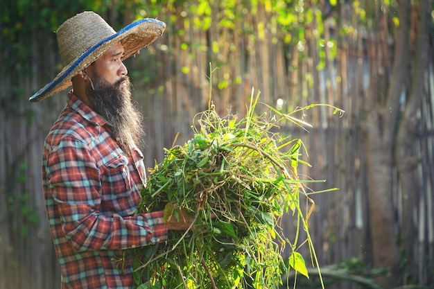 Jardineiro segurando um pedaço de grama no braço Foto gratuita