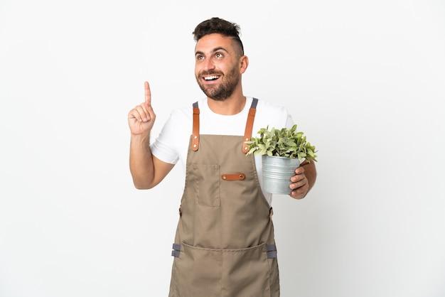 Jardineiro segurando uma planta sobre um fundo branco isolado, pensando em uma ideia apontando o dedo para cima