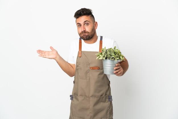 Jardineiro segurando uma planta sobre um fundo branco isolado, tendo dúvidas enquanto levanta as mãos
