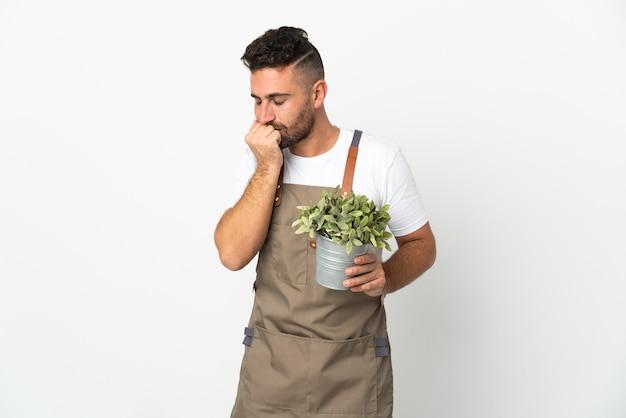 Jardineiro segurando uma planta sobre um fundo branco isolado, tendo dúvidas