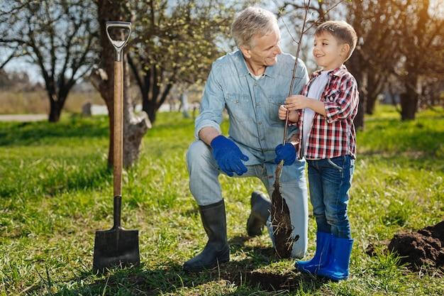 Jardineiro sênior ensinando um neto a cuidar de um jardim familiar plantando uma nova árvore frutífera na primavera