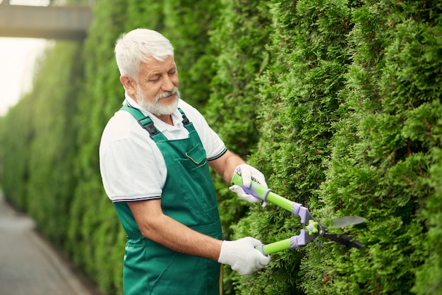 Jardineiro sênior usando uma tesoura para arbustos.