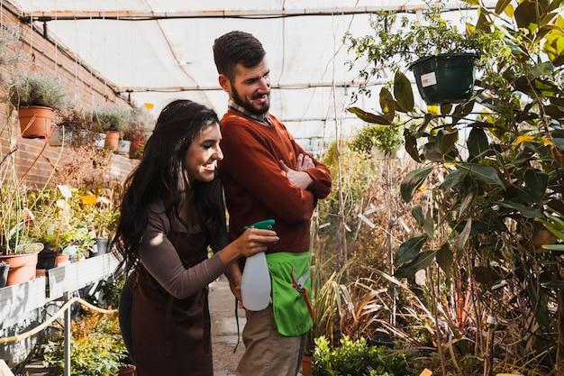 Jardineiros alegres que pulverizam plantas