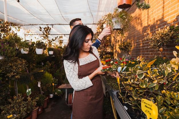 Jardineiros cuidando de flores