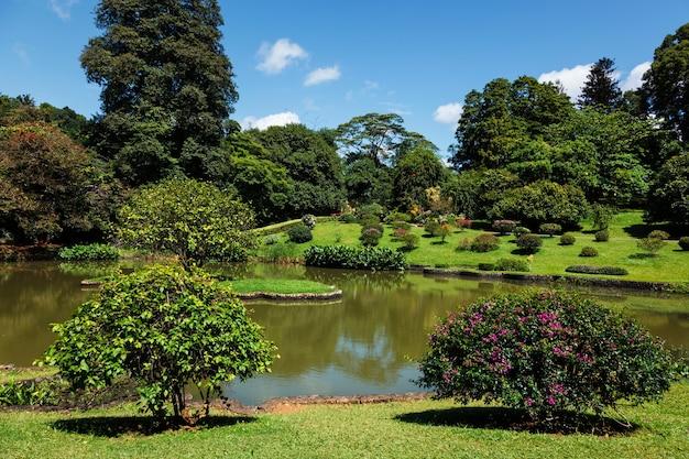 Jardins botânicos reais de peradeniya em kandy sri lanka