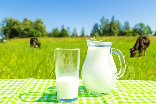 Jarro e copo de leite em um fundo de campo verde e céu azul. alimentação saudável.