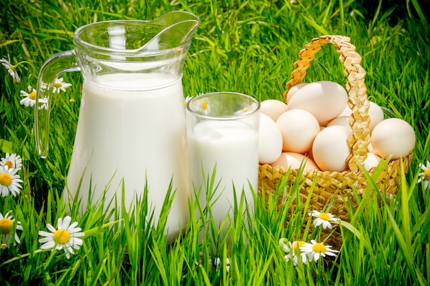 Jarro e copo de leite sobre grama verde