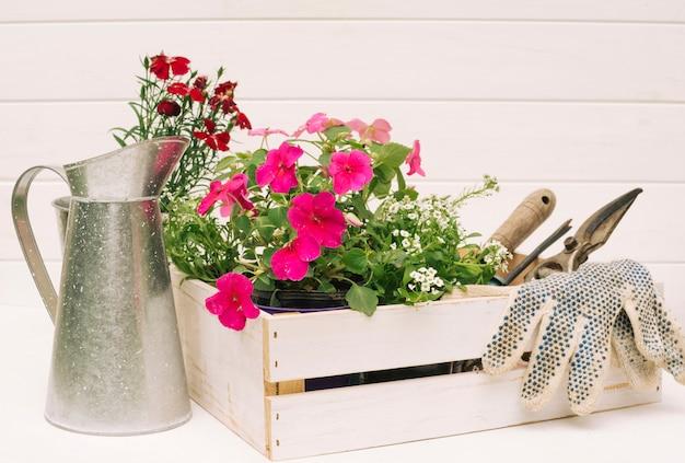 Jarro metálico perto de flores e equipamentos de jardim em caixa perto da parede