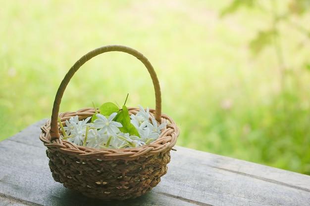 Jasmim doce em uma adorável cesta colocada no chão de madeira.