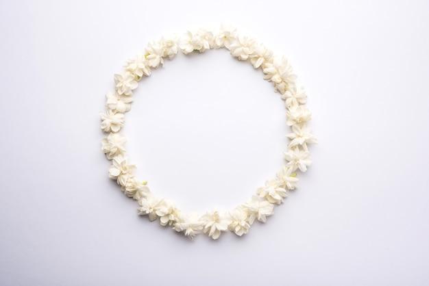Jasminum sambac ou flor mogra disposta em forma de moldura circular ou retangular sobre fundo branco, foco seletivo