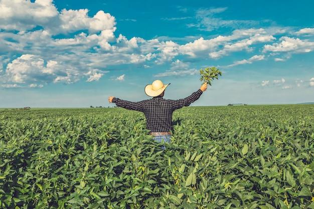Jovem agricultor com chapéu segurando soja no campo de soja.