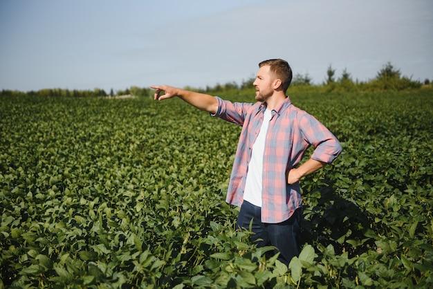 Jovem agricultor em campos de soja