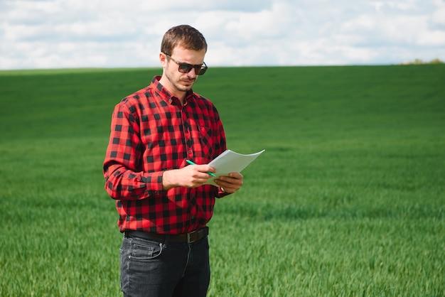 Jovem agricultor em um campo de trigo. trigo jovem na primavera. conceito de agricultura. um agrônomo examina o processo de amadurecimento do trigo no campo. o conceito de negócio agrícola
