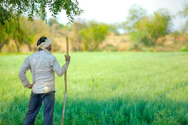 Jovem agricultor indiano em pé no campo de trigo