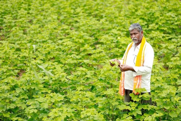 Jovem agricultor indiano no campo de algodão