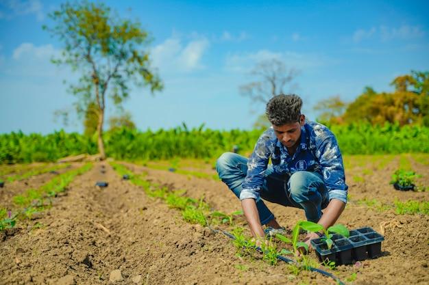 Jovem agricultor indiano no campo de banana