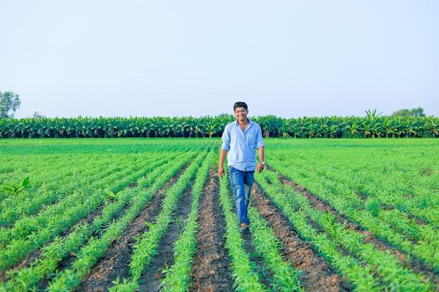 Jovem agricultor indiano no campo de trigo