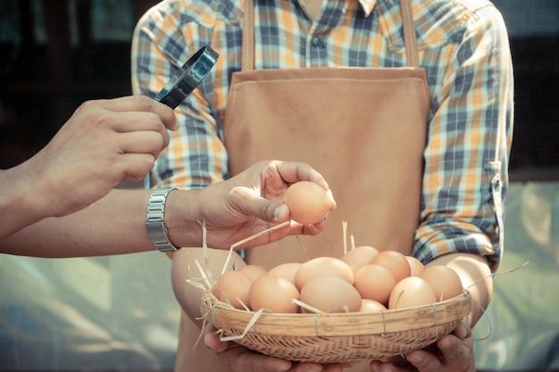 Jovem agricultor inteligente usar camisa xadrez de manga longa avental marrom está segurando ovos de galinha frescos na cesta,