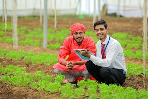 Jovem agrônomo e fazendeiro indiano discute em casa de vegetação ou casa de família