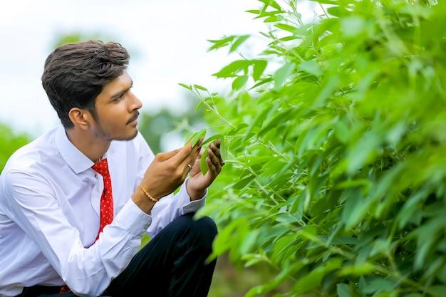 Jovem agrônomo indiano no campo