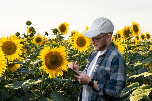 Jovem agrônomo inspecionando girassóis no campo