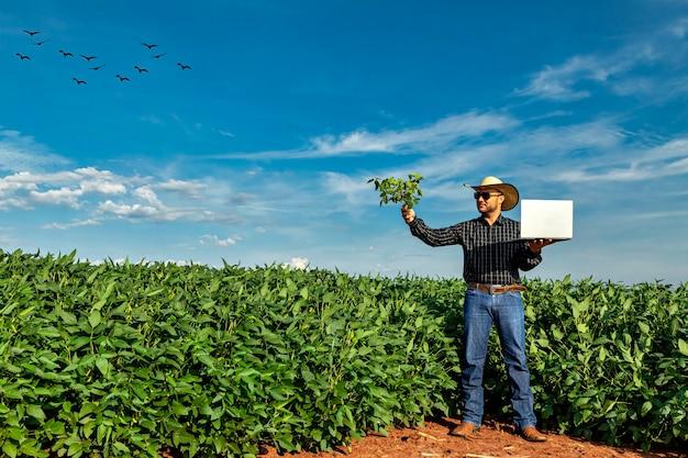 Jovem agrônomo no chapéu segurando o caderno no campo de soja.