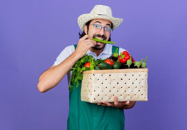 Jovem barbudo jardineiro usando macacão e chapéu segurando uma caixa cheia de vegetais e mordendo pimenta verde em pé sobre a parede azul