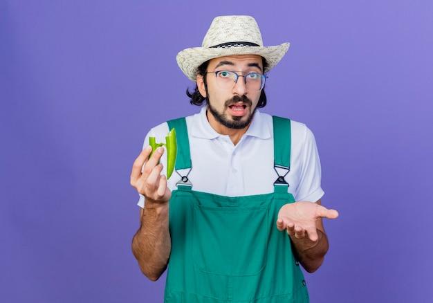 Jovem barbudo jardineiro, vestindo macacão e chapéu, segurando metades de pimenta malagueta verde, olhando para frente com o braço estendido, confuso em pé sobre a parede azul