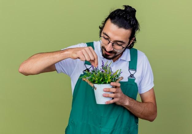 Jovem barbudo jardineiro vestindo macacão segurando uma planta em um vaso olhando para ela sorrindo em pé sobre a parede verde claro