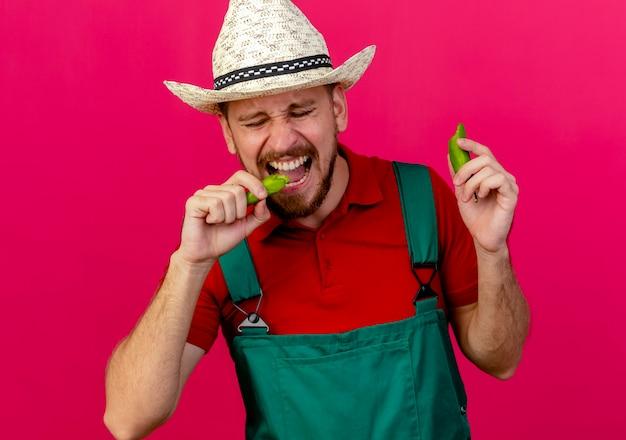 Jovem bonito jardineiro eslavo de uniforme e chapéu segurando e mordendo pimenta com os olhos fechados