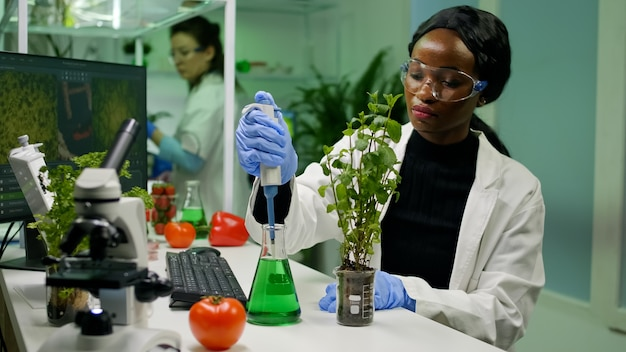 Jovem botânico pesquisador pegando solução genética de tubo de ensaio com micropipeta colocando uma muda analisando ogm de plantas botânicas