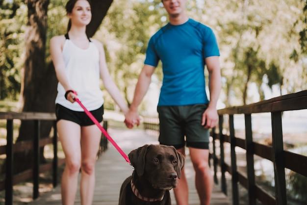 Jovem casal caucasiano está andando com seu cachorro