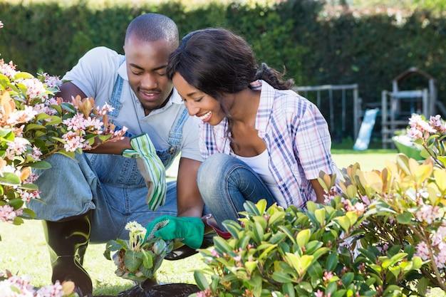 Jovem casal de jardinagem juntos