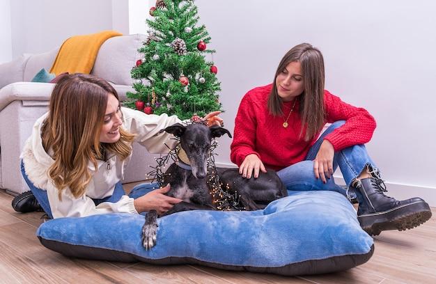 Jovem casal de lésbicas se divertindo decorando a árvore de natal com seu cachorro, feliz natal e feliz ano novo conceito. boas festas. espaço para texto