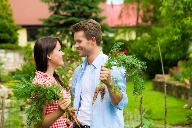Jovem casal feliz com as cenouras do seu jardim