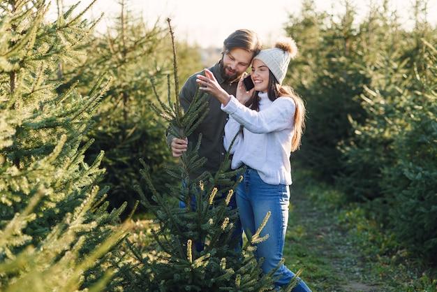 Jovem casal feliz e bonito aprecia seu pinheiro selecionado no setor florestal durante a preparação para as férias.
