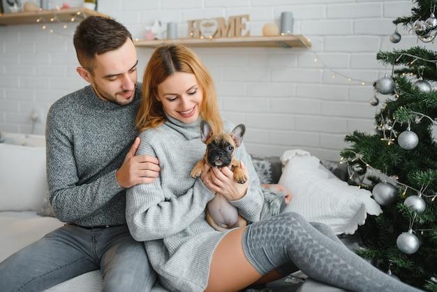 Jovem casal lindo está brincando com seu cachorro na sala de estar festiva de ano novo pouco antes do natal