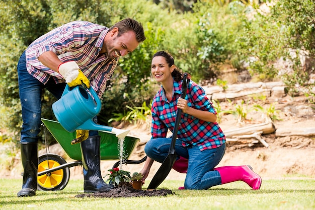 Jovem casal plantando no gramado