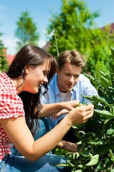 Jovem casal trabalhando no jardim