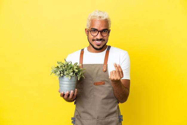 Jovem colombiano segurando uma planta isolada em um fundo amarelo fazendo gesto de dinheiro