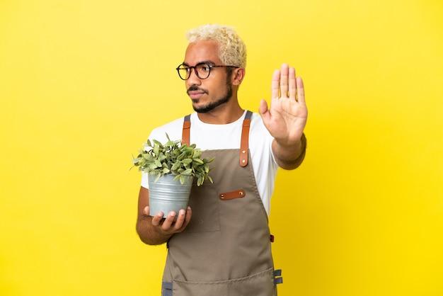 Jovem colombiano segurando uma planta isolada em um fundo amarelo, fazendo um gesto de pare e desapontado