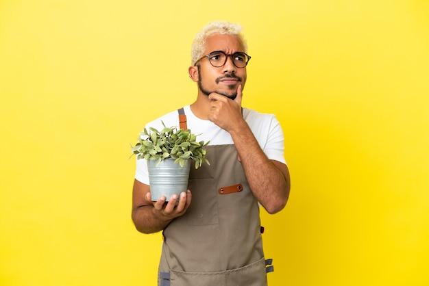Jovem colombiano segurando uma planta isolada em um fundo amarelo, tendo dúvidas