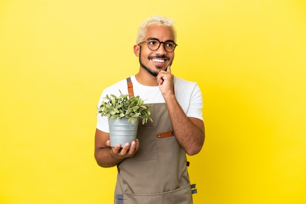 Jovem colombiano segurando uma planta isolada em um fundo amarelo, tendo uma ideia enquanto olha para cima