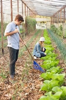 Jovem concentrada limpando folhas secas no chão