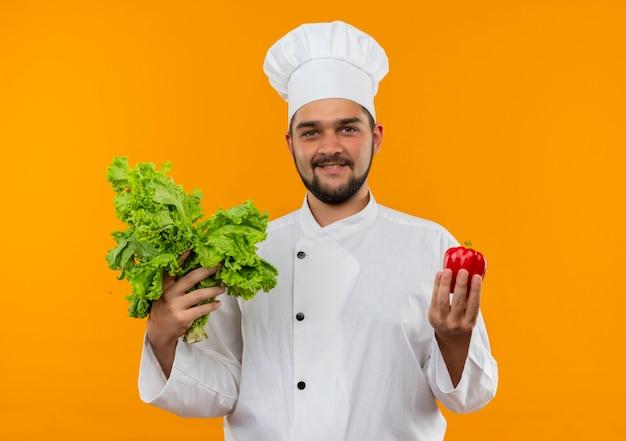 Jovem cozinheiro satisfeito com uniforme de chef segurando pimenta e alface isoladas em um espaço laranja